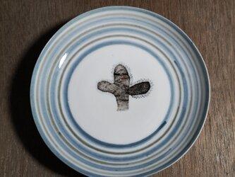 4寸皿(サボテン)の画像