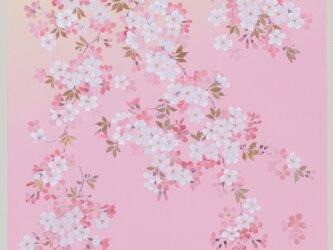 風呂敷 宇野千代 68cm幅 花咲くざくらの画像