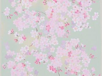 風呂敷 宇野千代 68cm幅 ふわり桜の画像