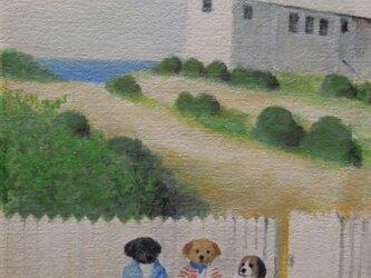 海のそばの白い家とヨットの画像