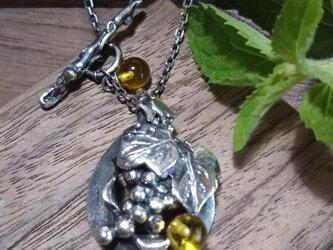 葡萄のネックレスの画像