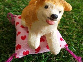 おざぶ犬(秋田犬)の画像