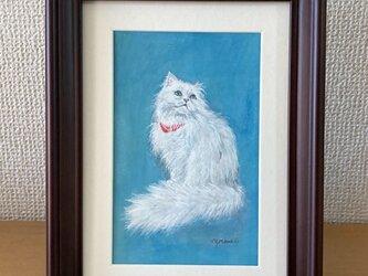 小さな猫の絵【チンチラシルバー】の画像