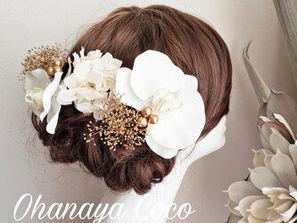 hirahira 胡蝶蘭とゴールドかすみ草の髪飾り8点Set No395の画像