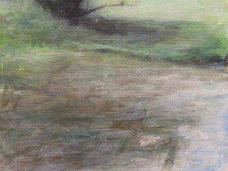 水辺の画像