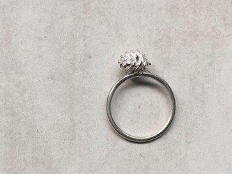 松ぼっくりの指輪の画像