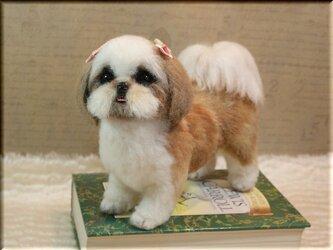 羊毛フェルト 犬 シーズー 犬フィギュアの画像