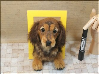 羊毛フェルト 犬 ダックスフントのフレーム ダックスの画像