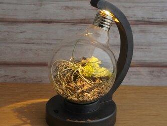 bulb terrarium ball [cast iron]の画像