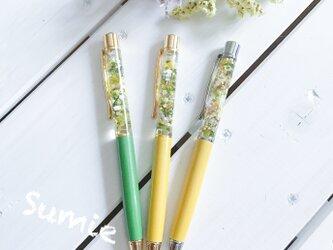 ☆ハーバリウムボールペン 緑&黄色系 ① ☆の画像