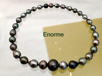 Enorme(エノルメ)の画像