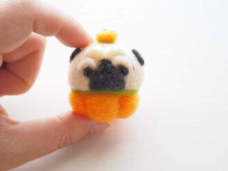 【受注製作】まゆパグ(フォーン・黒) ハロウィンコスプレ(オレンジ・きみどり・紫) 羊毛フェルト(アクレーヌ)※受注製作の画像