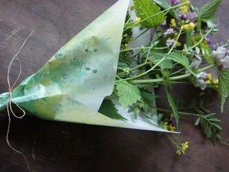 包装紙【菜の花】の画像