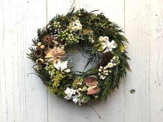 シックなグリーン・プリザーブドフラワー&木の実のリース・クリスマスリースにいかが?の画像