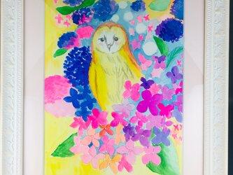 幸せを呼ぶフクロウ   フクロウと紫陽花 And others 52の画像