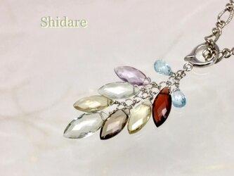 Shidare(枝垂れ)の画像