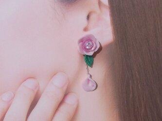 3200→2800【期間限定Sale】ピンクグラデの薔薇 ピアス イヤリング 粘土[送料無料]②の画像