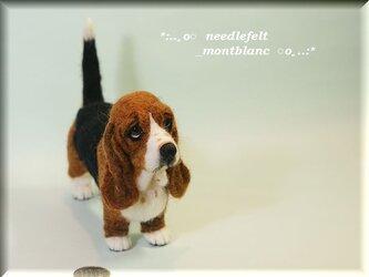羊毛フェルト 犬 バセット・ハウンドの画像