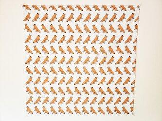 キタキツネの風呂敷の画像