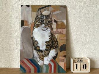 茶の間の猫(原画)の画像