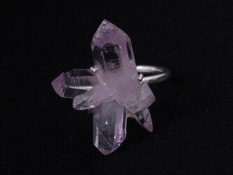 ラベンダーの結晶リングの画像