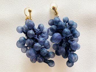 Quguriイヤリング「grapes」の画像