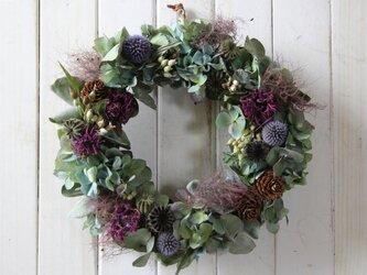 スモークツリーと紫陽花の秋リースの画像