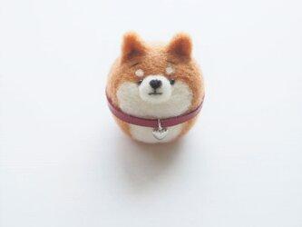 チャーム付き首輪のまゆ柴犬(赤柴、黒柴、白柴) 羊毛フェルト(アクレーヌ)※受注製作の画像