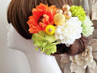爽花 和ponボールとビタミンカラーの髪飾り10点Set No613の画像