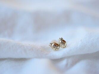 [10K]Ladybugピアスの画像