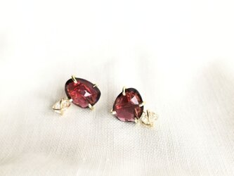 GEMSTONE RED GARNET AND HERKIMER DIAMOND PIERCEの画像