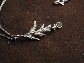 糸杉の葉のネックレス(ジルコニアつき)の画像