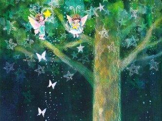 星のなる樹 ⅱ【SM】の画像