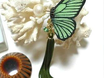 蝶のピアス 小 (マダラ系)の画像