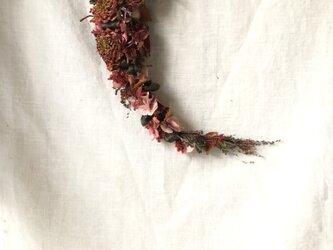 マルーンカラーのガーランドスワッグ /ダリアの画像