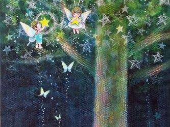 星のなる樹 ⅲ【SM】の画像
