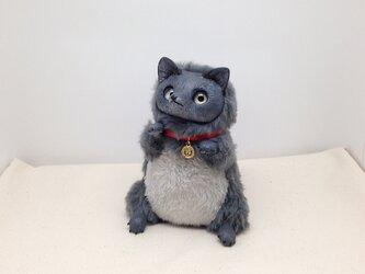 ☆灰色キツネ3の画像