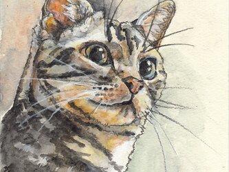 ※要写真 ハガキサイズの水彩スケッチ(1匹のみ、首から上の似顔絵)の画像