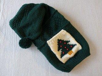 クリスマスセーター「グリーン」犬のセーターの画像