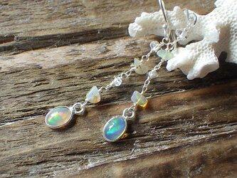 *sv925*Opal Dangling Earrings ☆プレシャスオパールの画像
