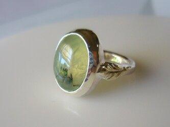 プレナイトルチルと植物の指輪の画像
