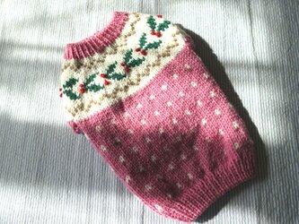 ヒイラギのセーター「ピンク」犬のセーターの画像