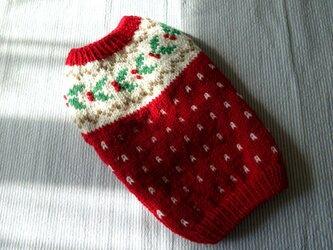 ヒイラギのセーター「赤」犬のセーターの画像