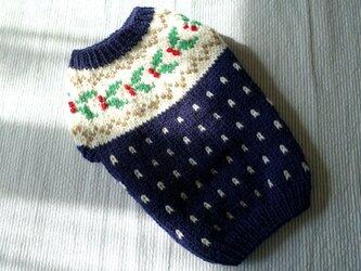 ヒイラギのセーター「ネービー」犬のセーターの画像