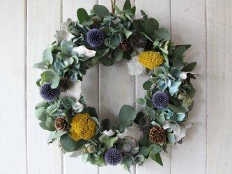 ユーカリと紫陽花の秋色リースの画像