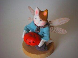 縮緬福猫 ランタン その七の画像