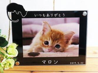 猫シルエット フォトフレーム L判サイズ ブラック 名入れ刻印無料 横型の画像