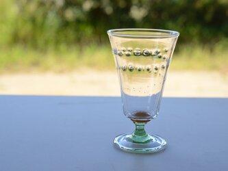 ヒカリヒトスジグラス(ミントなステム)の画像