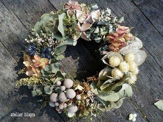 atelier blugra八ヶ岳〜ユーカリと紫陽花のWreathの画像