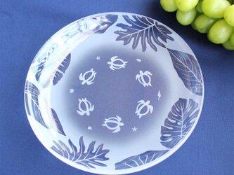 【ホヌと南国の葉っぱ】ガラス中皿の画像
